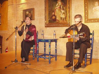 20071209131742-flamenco-por-las-penas.jpg