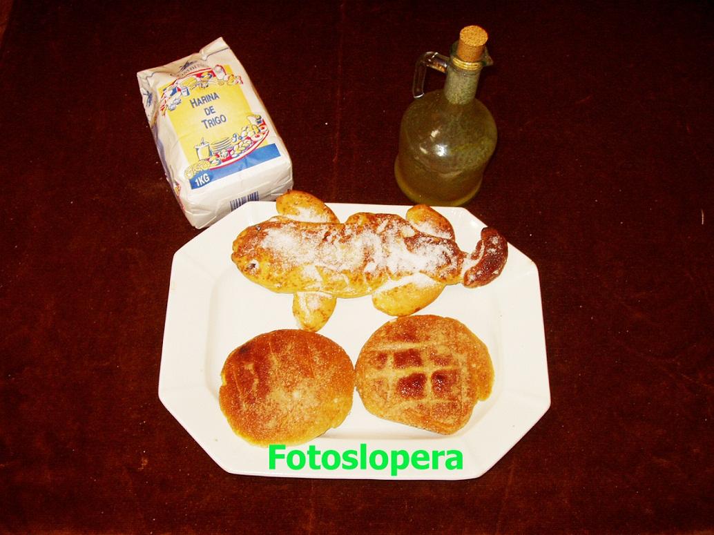 20151030094906-lagartos-y-tortas-de-aceite-copia.jpg